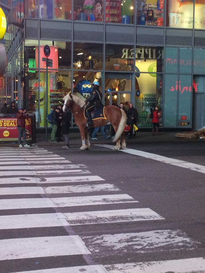 police on horse