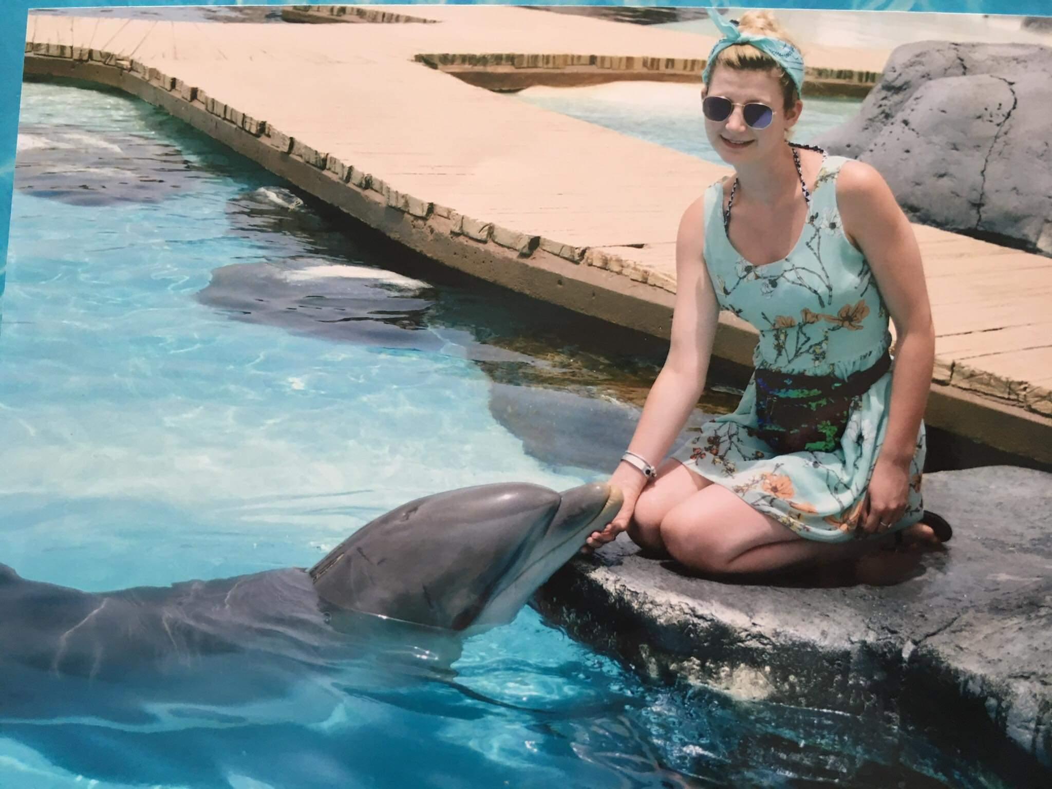 Feeding Dolphins Lanzarote
