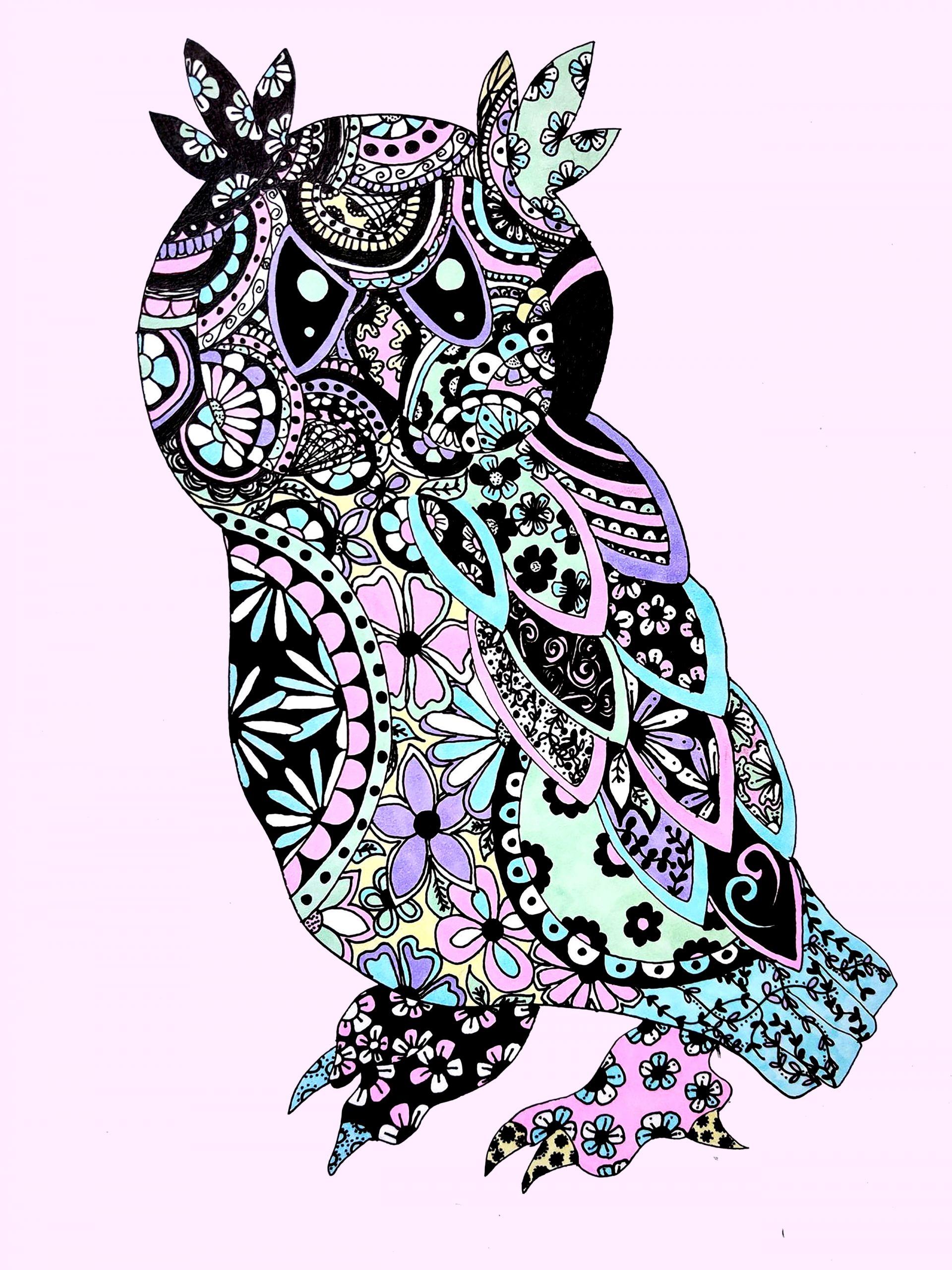 Pastel Doodle Owl