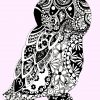 black and white owl pink