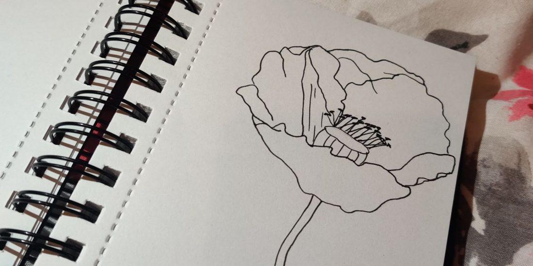 no detail poppy